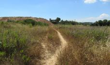 Treballs a can Planas per assegurar l'estabilitat d'un camí perillós per la salut