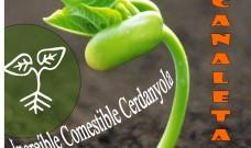 Increïble Comestible obrirà diumenge un nou hort al barri de Canaletes!!