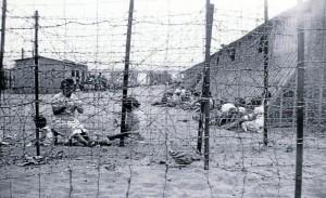 Camp de concentració d'Argelés