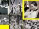 Dones i Memòria: Elisabeth Eidenbenz, filàntropa suïssa que creà la Maternitat d'Elna