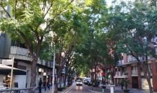 Es rebaixaran les xicrandes de l'Avinguda de Catalunya