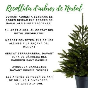 recollida_darbres_de_nadal_2018