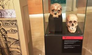 ossos_visita_guiada
