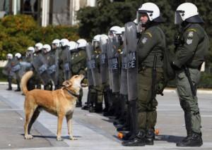 Rumbo enfrontant-se a la policia
