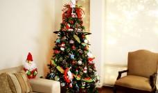 A partir d'avui s'habiliten punts de recollida dels arbres de Nadal