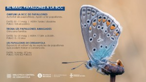 papallones_web